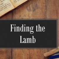Finding the Lamb
